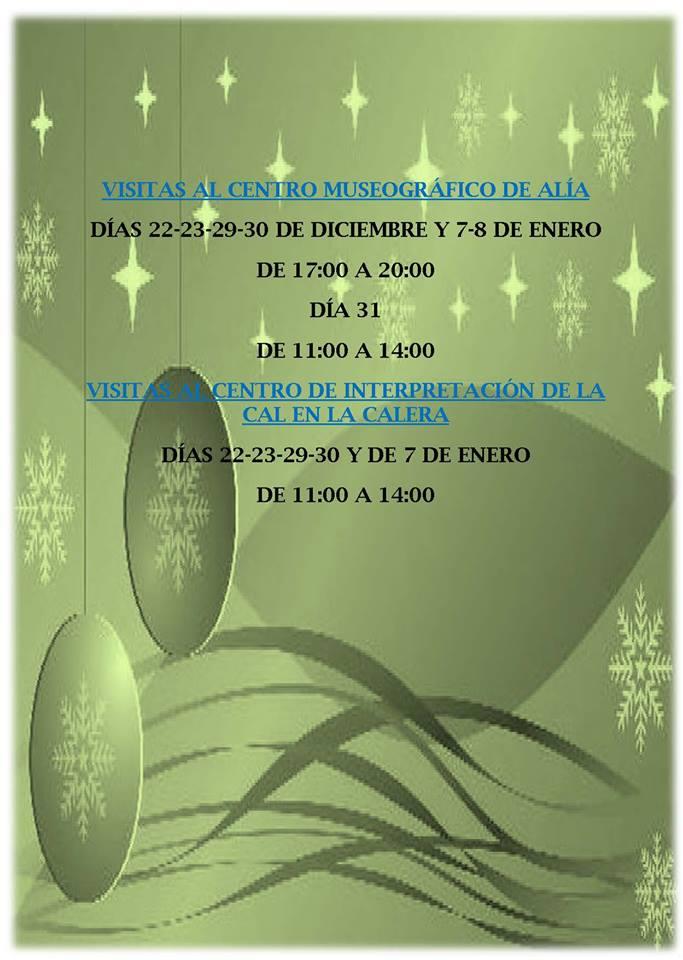 Programa navideño 2016-2017 - Alía 8