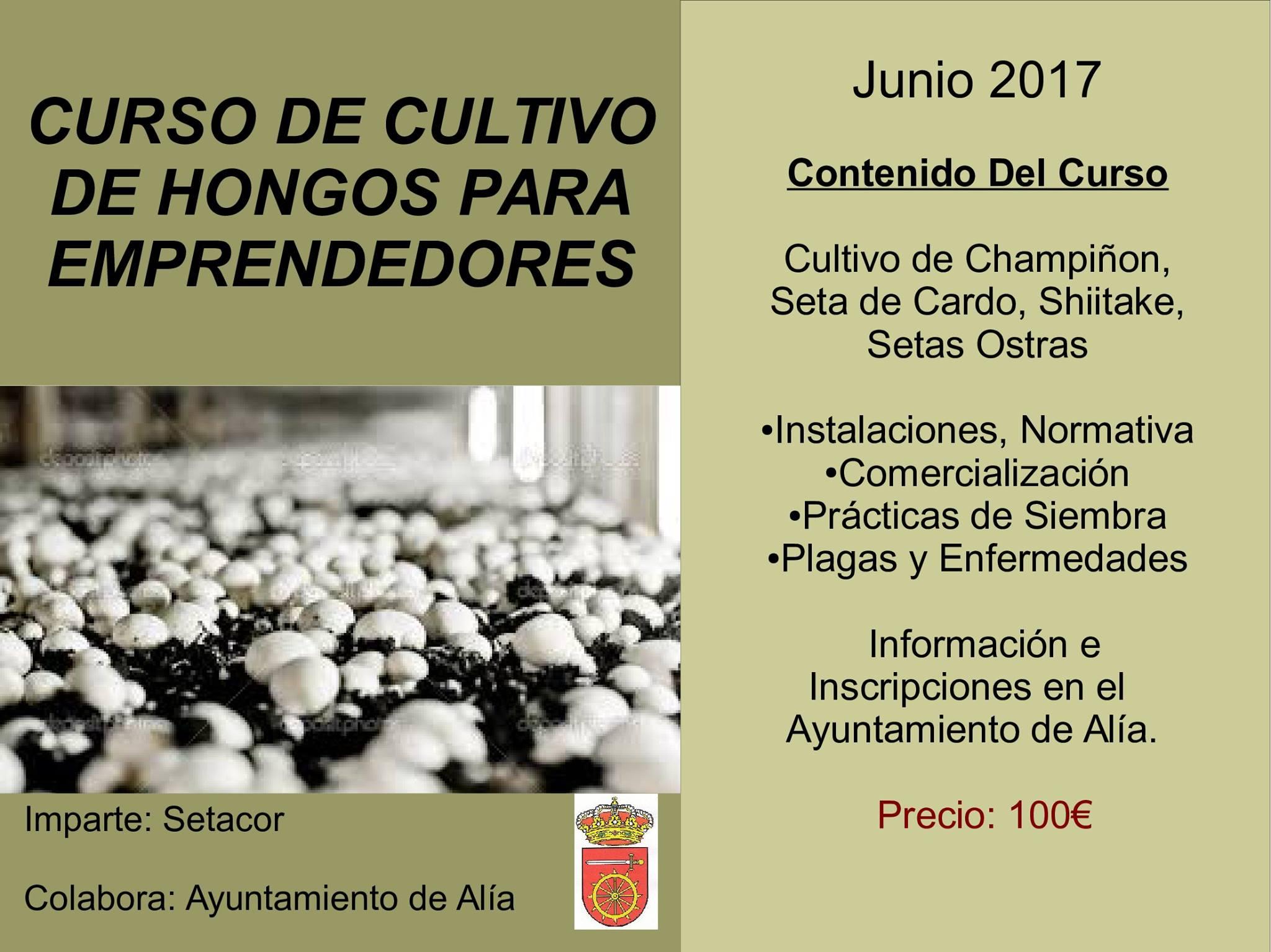 Cultivo de hongos 2017 - Alía