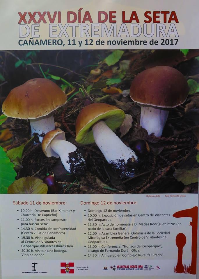XXXVI Día de la Seta de Extremadura - Cañamero