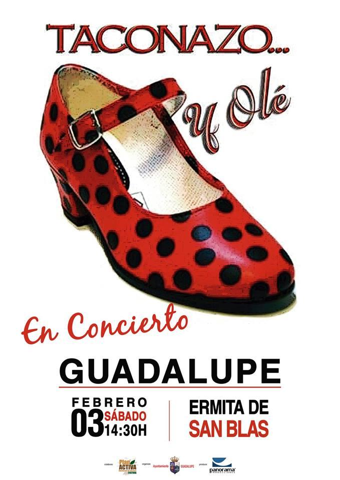 Romería de San Blas 2018 - Guadalupe