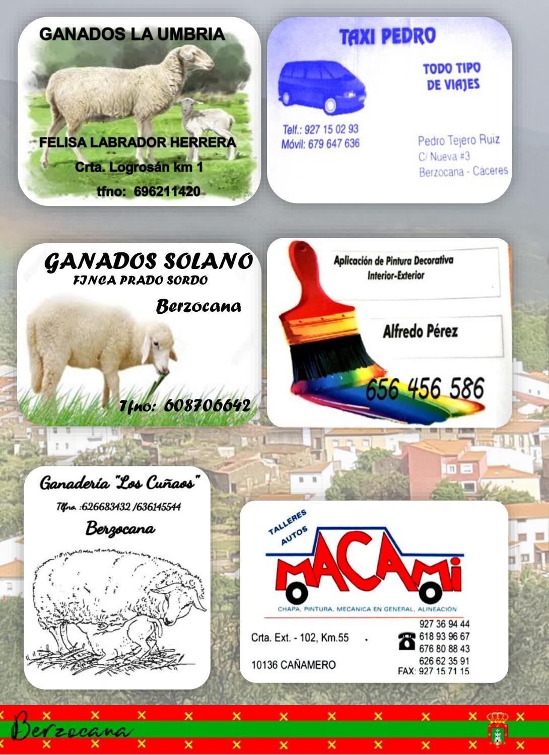 Programa de fiestas en honor a San Fulgencio y Santa Florentina 2018 - Berzocana 17
