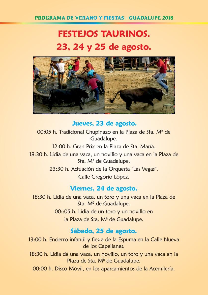 Programa de verano y fiestas 2018 - Guadalupe 9