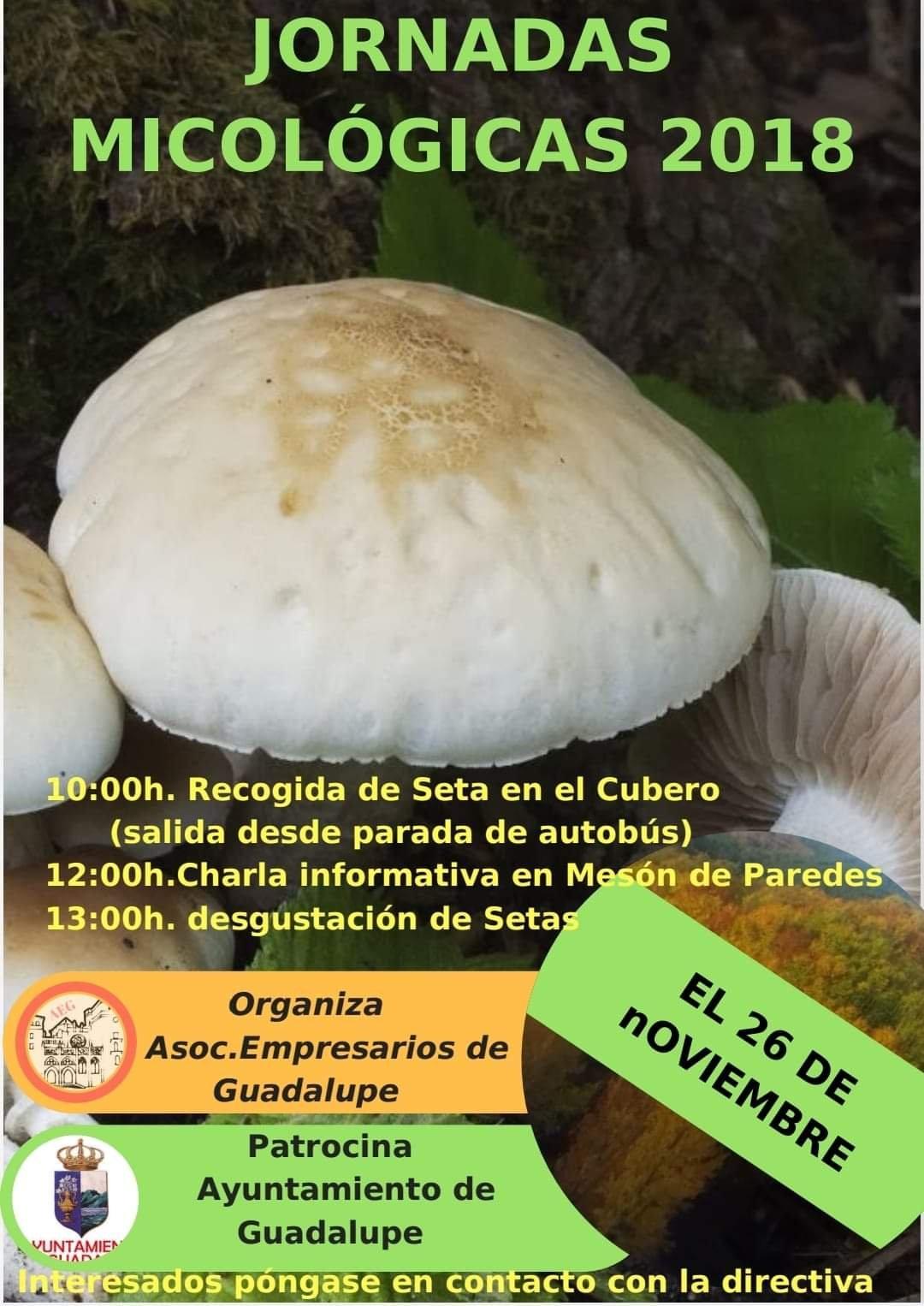 Jornadas micológicas 2018 - Guadalupe (Cáceres)