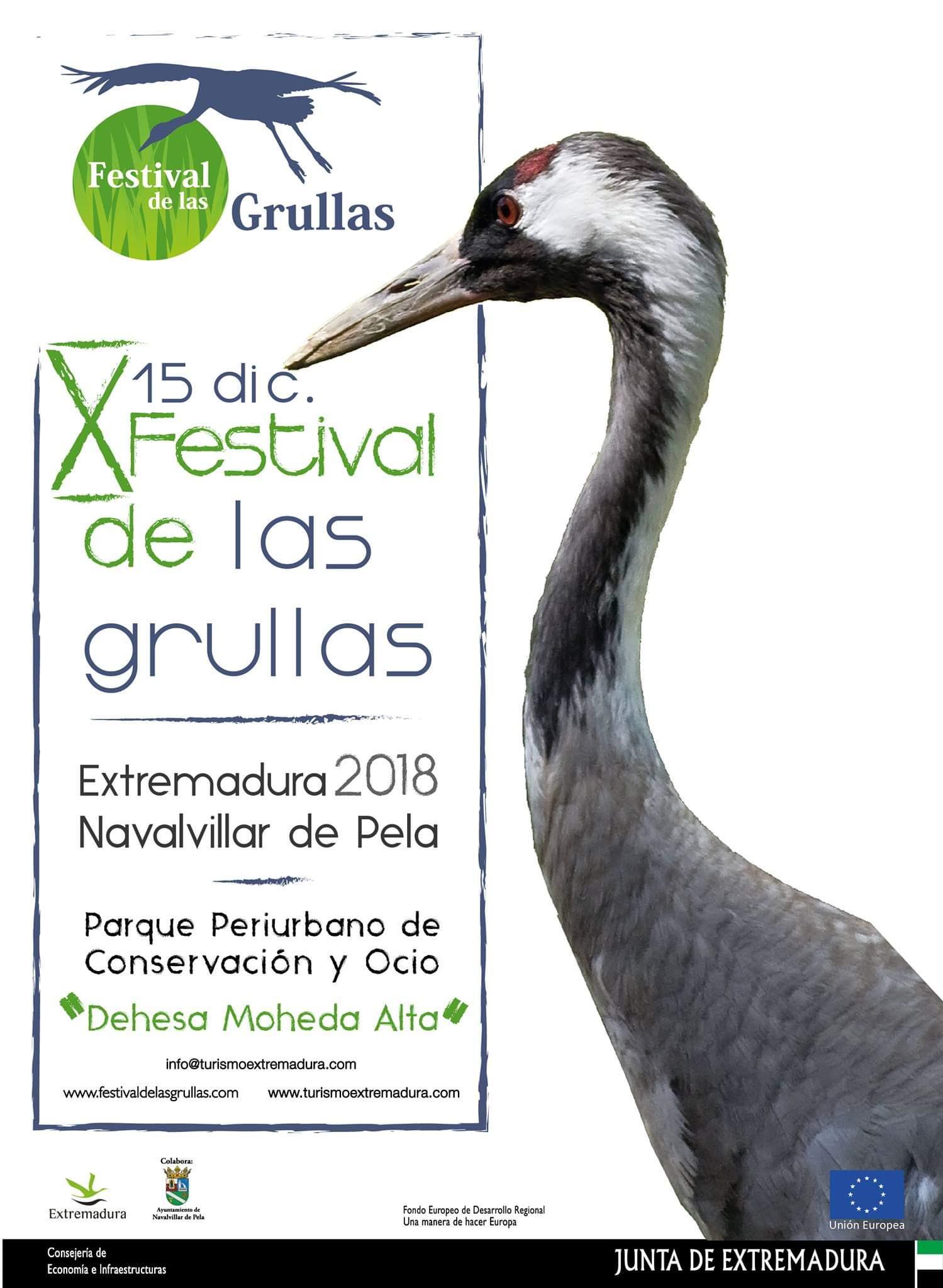 X Festival de las grullas - Navalvillar de Pela (Badajoz)