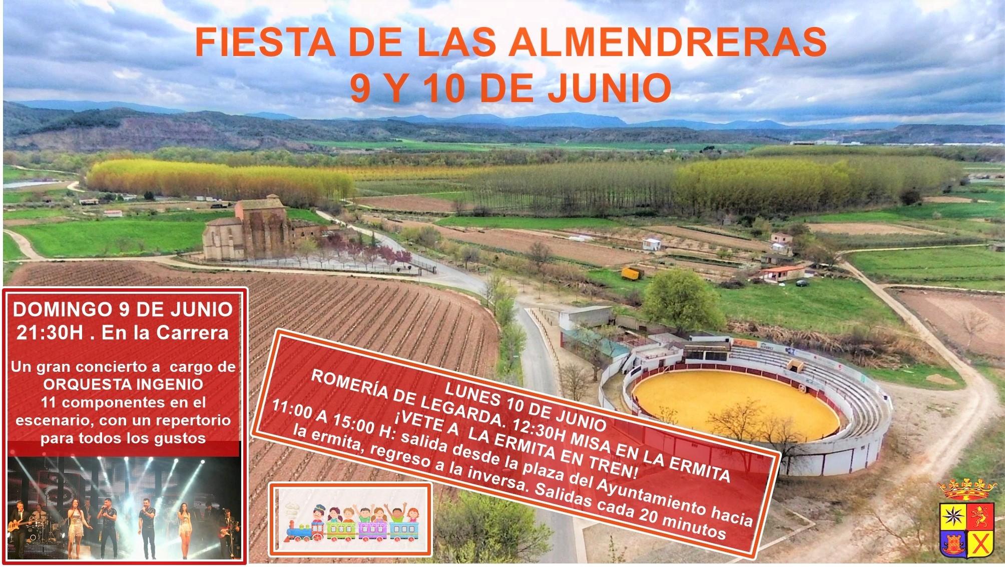 Fiesta de las almendreras 2019 - Mendavia (Navarra)