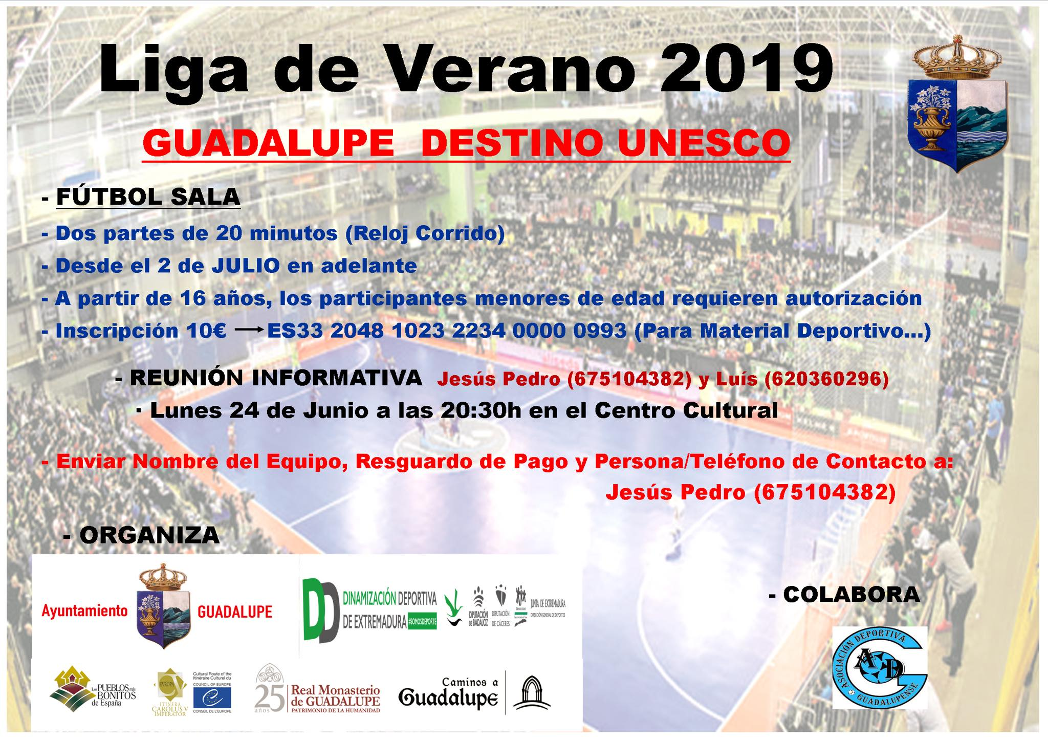 Liga de fútbol sala de verano 2019 - Guadalupe (Cáceres)