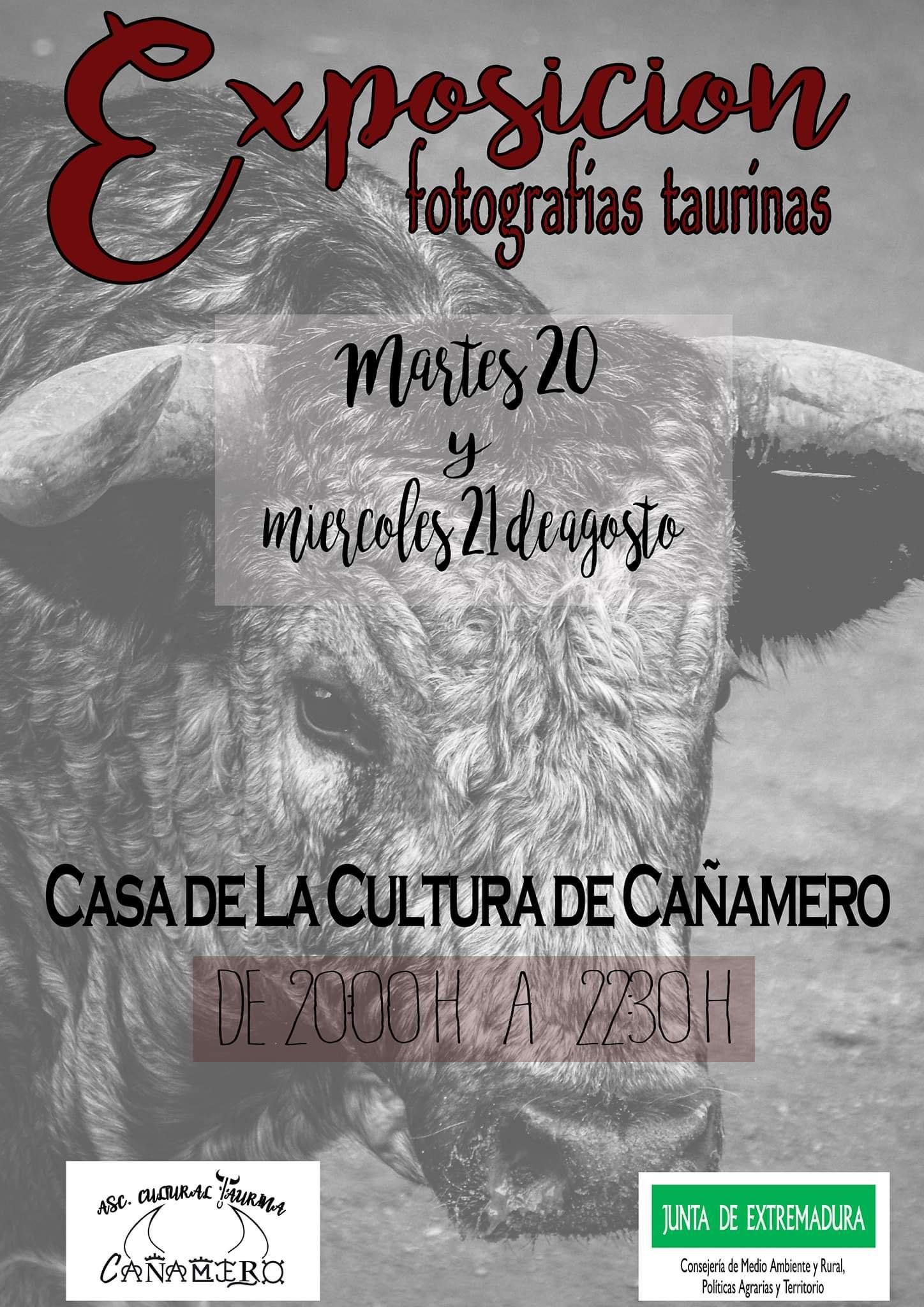 Exposición de fotografías taurinas 2019 - Cañamero (Cáceres)