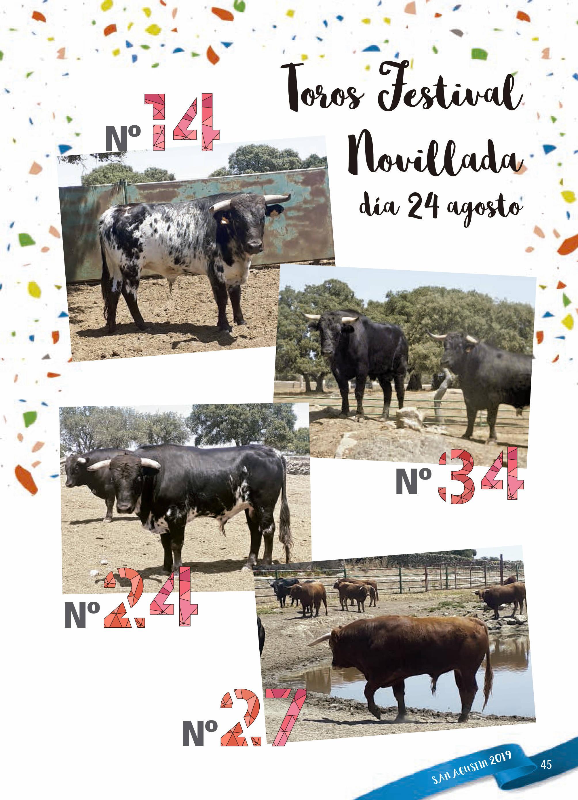 Programa de ferias y fiestas 2019 - Fermoselle (Zamora) 17