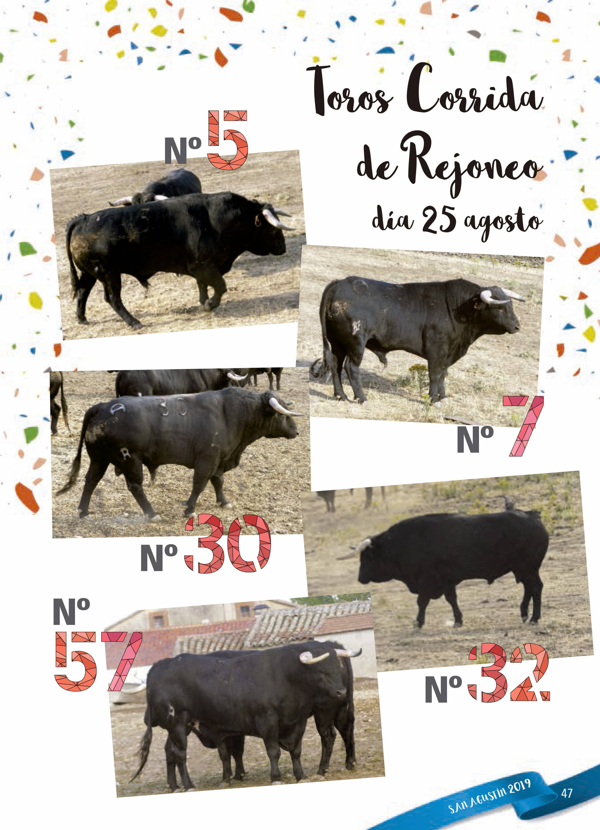 Programa de ferias y fiestas 2019 - Fermoselle (Zamora) 18