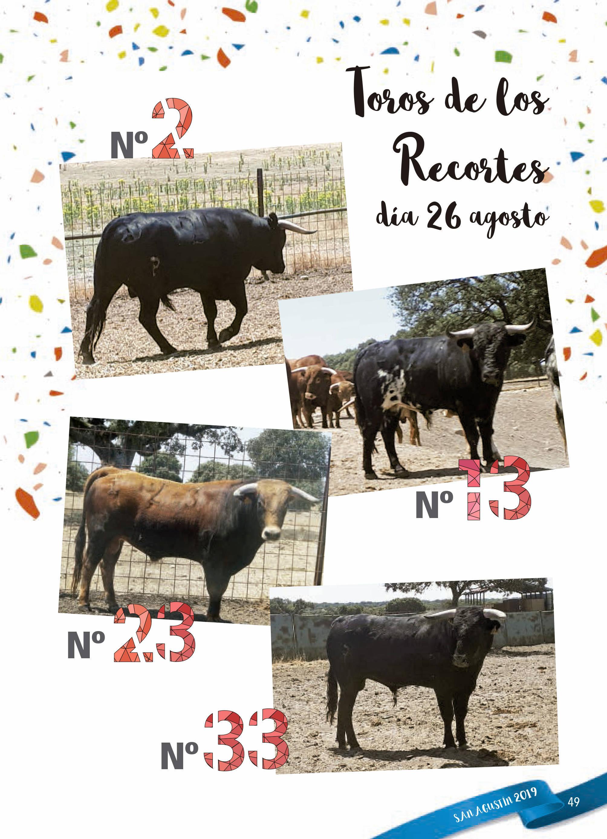 Programa de ferias y fiestas 2019 - Fermoselle (Zamora) 19