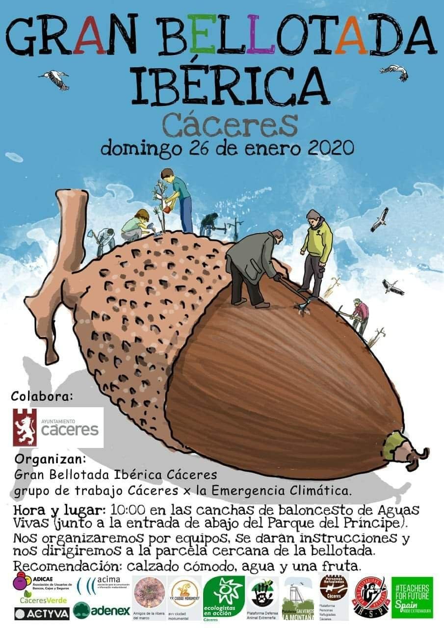Gran bellotada ibérica 2020 - Cáceres
