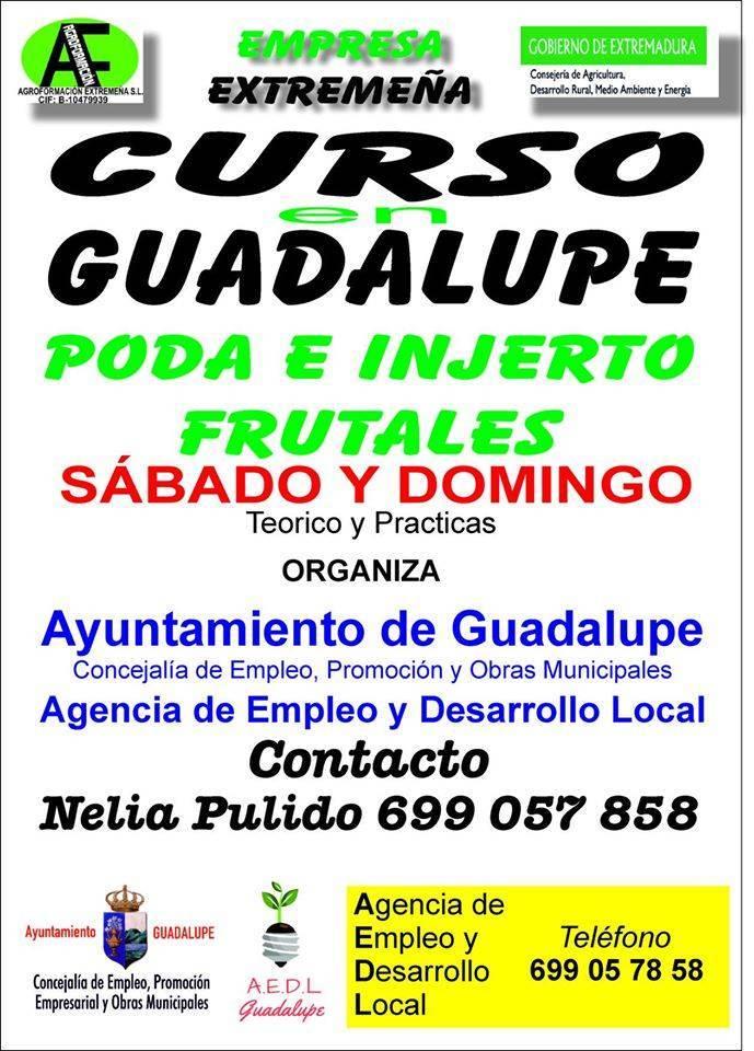 Curso de poda e injerto frutales 2020 - Guadalupe (Cáceres)