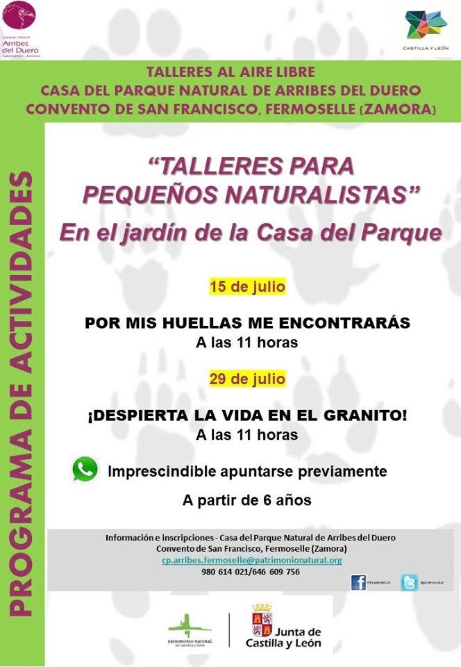 Talleres al aire libre julio 2020 - Fermoselle (Zamora)