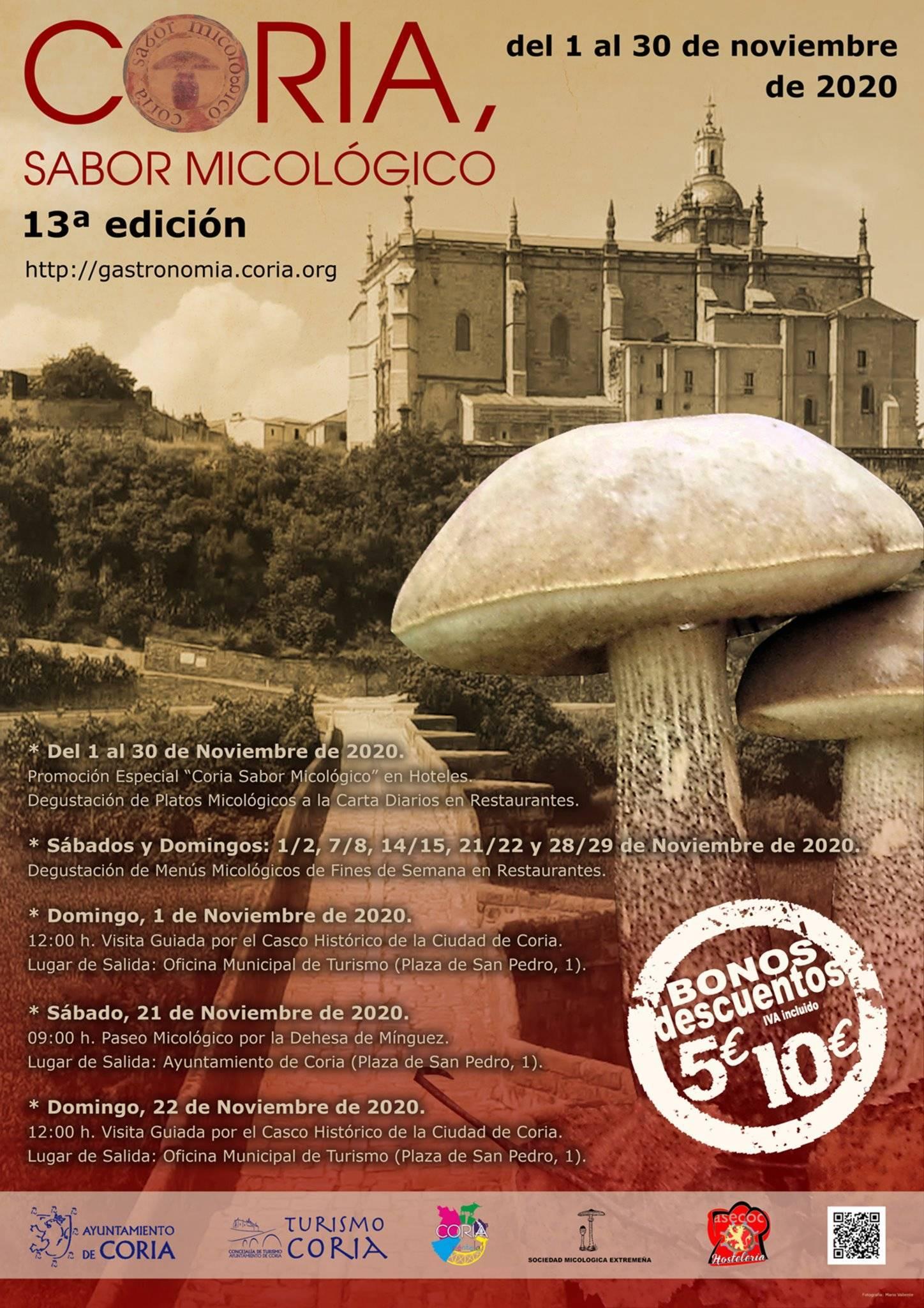 Sabor micológico (2020) - Coria (Cáceres) 1