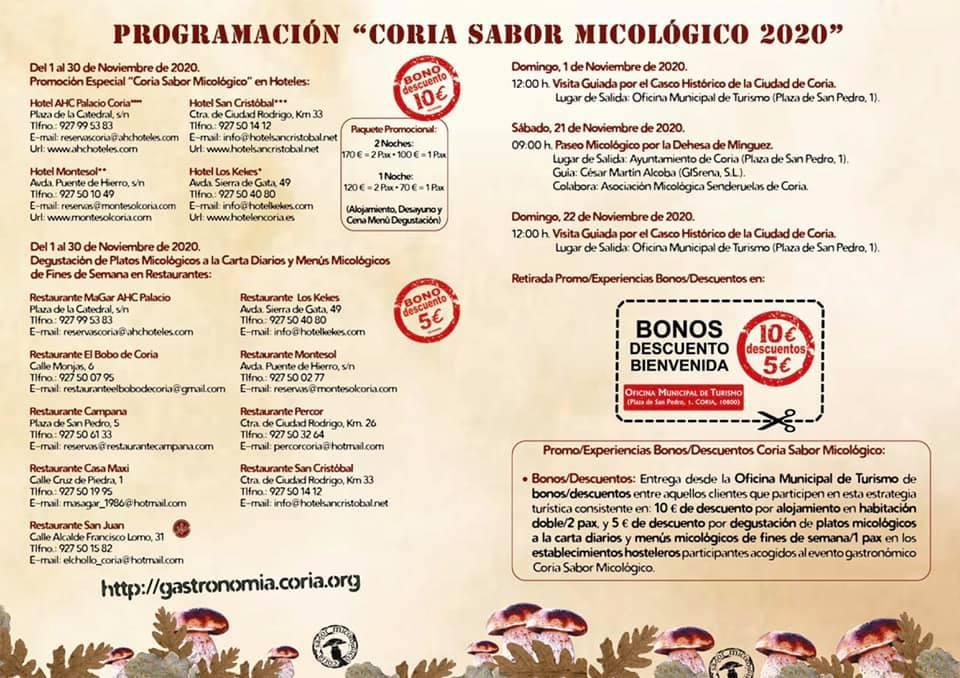 Sabor micológico (2020) - Coria (Cáceres) 2