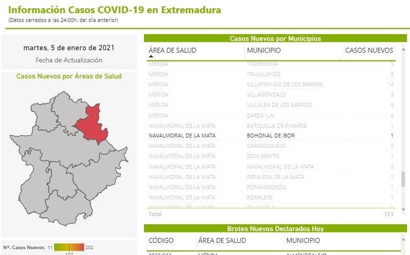 3 nuevos casos positivos de COVID-19 (enero 2021) - Bohonal de Ibor (Cáceres) 2